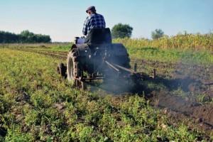 Επιδοτήσεις μόνο σε επαγγελματίες αγρότες