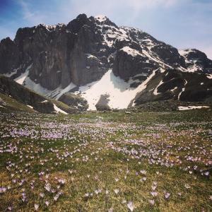 Πάρτε τα βουνά για να ζήσετε περισσότερο….