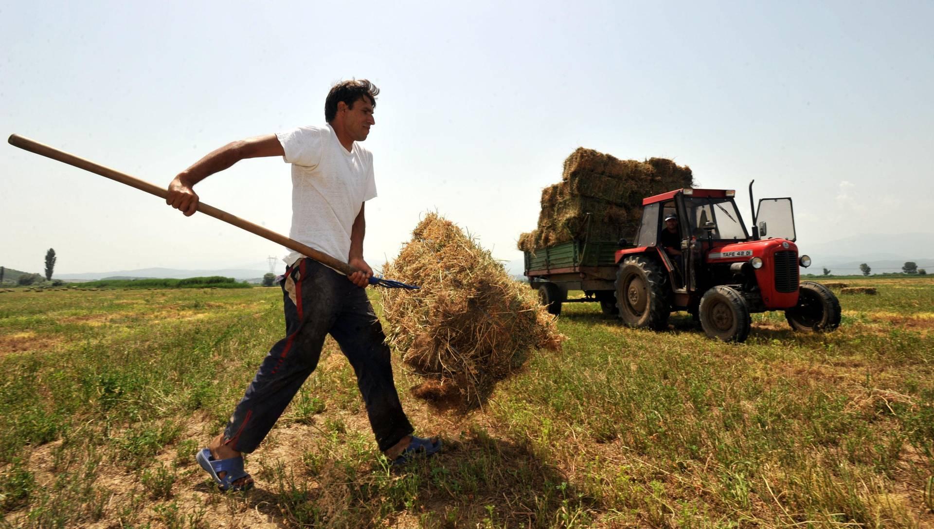 Άμεση ανάγκη για εργάτες γης – Σε κίνδυνο οι καλλιέργειες