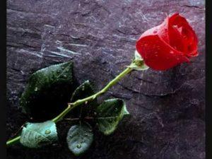 Συλλυπητήριο μήνυμα για το Θωμά Φίλιο