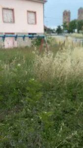 """""""Δάσος"""" η παιδική χαρά στο προαύλιο του νηπιαγωγείου στις Αμυγδαλιές Γρεβενών. Τα παιχνίδια έχουν ρημάξει"""
