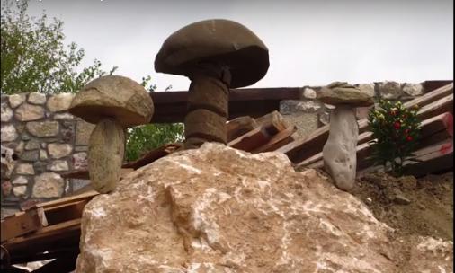 Τα δηλητηριώδη είδη μανιταριών στην Ελλάδα -Πώς ξεχωρίζουν, τι πρέπει να προσέχουν οι συλλέκτες