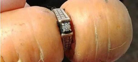 Έχασε το δαχτυλίδι των αρραβώνων της πριν 13 χρόνια -Το βρήκε σε καρότο!