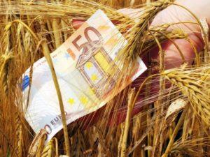 Επιστρέφονται 17 εκατ. ευρώ στους Ελληνες αγρότες από την ΕΕ