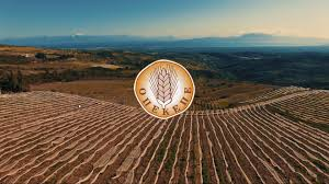 ΟΠΕΚΕΠΕ: Νέες πληρωμές σε 1.026 δικαιούχους αγρότες