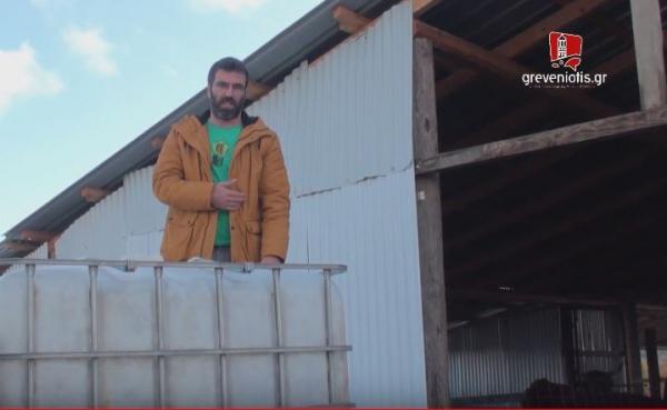 Κραυγή αγωνίας από κτηνοτρόφο στα ορεινά των Γρεβενών (video)