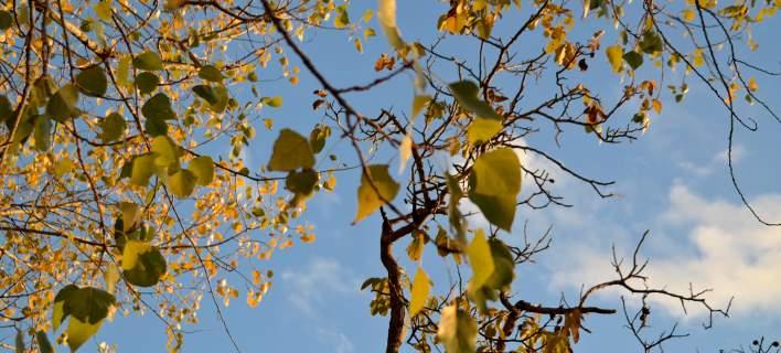 Βελτιωμένος ο καιρός την Πρωτοχρονιά -Άνοδος της θερμοκρασίας