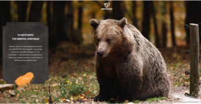 Το «μυστήριο της μικρής αρκούδας» στα σχολεία της χώρας