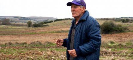 Εγκύκλιος για την απασχόληση συνταξιούχων λόγω γήρατος. Τι ισχύει τελικά με τις περικοπές