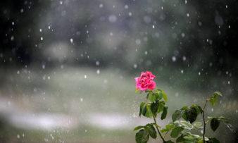 Πρωτομαγιά 2018: Με ομπρέλες θα μας βρει ο Μάιος – Δείτε πού θα βρέξει