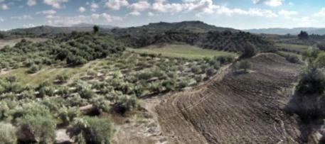 Τριάντα ημέρες απομένουν για να ολοκληρώσουν οι Δήμοι την υποχρέωση των οικιστικών ορίων στους δασικούς χάρτες