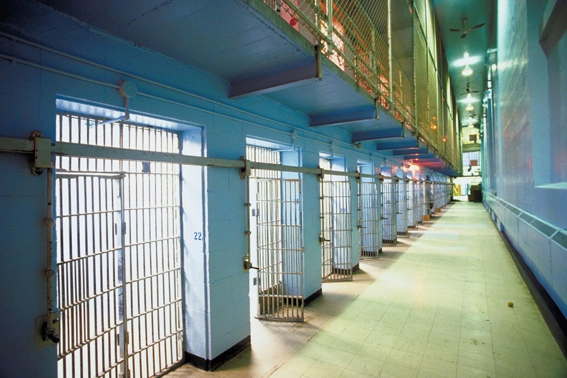 Στο ίδιο κελί και απομονωμένοι στις φυλακές Γρεβενών οι δολοφόνοι της Ελένης Τοπαλούδη