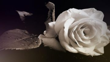 Τελευταίο αντίο στη μάνα *Του Γιάννη Νούσια