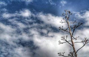 Στους -6 το θερμόμετρο το πρωί σε Γρεβενά και Φλώρινα – Γρήγορη άνοδος της θερμοκρασίας