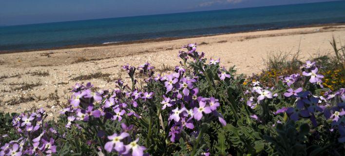 Μερομήνια: Τι καιρό θα κάνει το Πάσχα