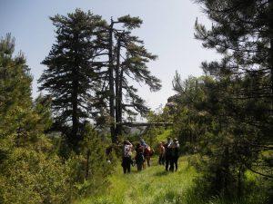 Πεζοπορία στα Γρεβενά για τον εορτασμό της Παγκόσμιας Ημέρας Περιβάλλοντος