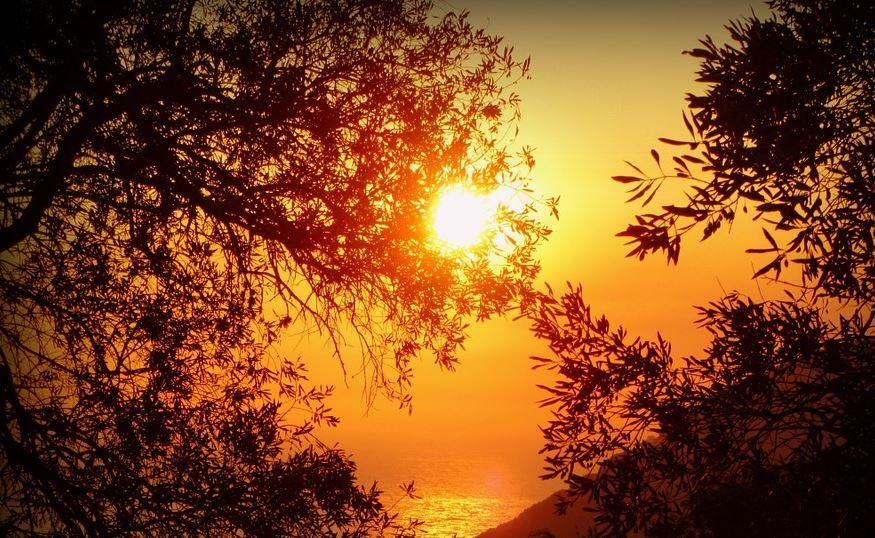 Ολοένα περισσότερες ζεστές ημέρες και λιγότερες κρύες νύχτες στην Ελλάδα λόγω της κλιματικής αλλαγής