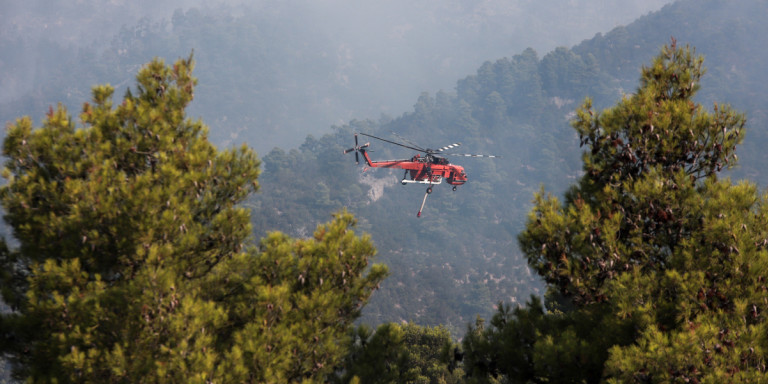 Φωτιά σε δασική έκταση στο Αμύνταιο Φλώρινας