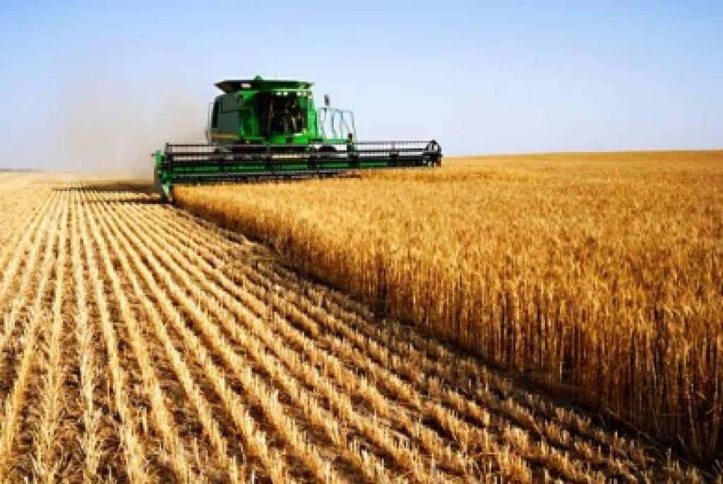 Οκτώβριο το νομοσχέδιο για τον αγροτικό τομέα