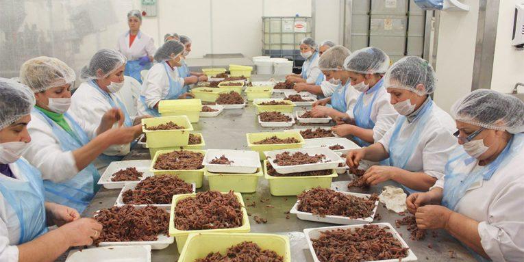Μετανάστες-εργάτες από το εξωτερικό ζητά η Αλβανία