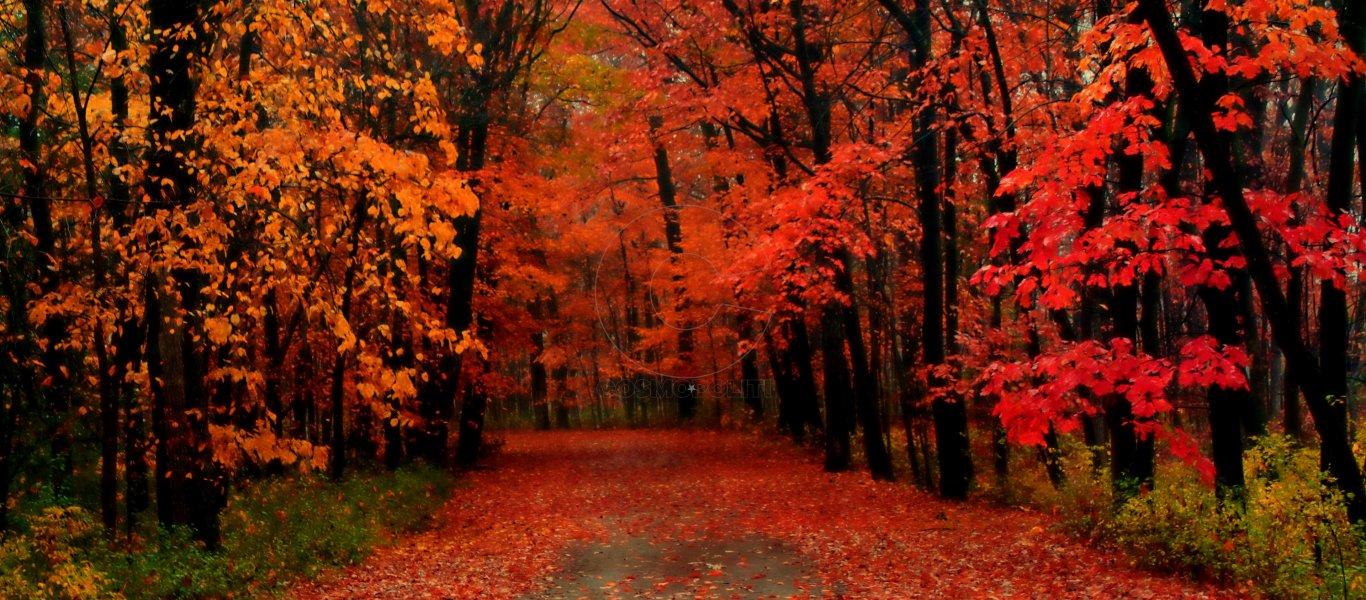 Γιατί είναι Οκτώβριος και όχι Οκτώμβριος – Πού κρύβεται η απάντηση