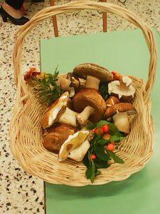 """Σεμινάριο με θέμα : """" Τα μανιτάρια στη κουζίνα """" παρέδωσε η κ. Δήμητρα Βέργου στο τμήμα Ά Μαγείρων του ΙΕΚ Γρεβενών"""