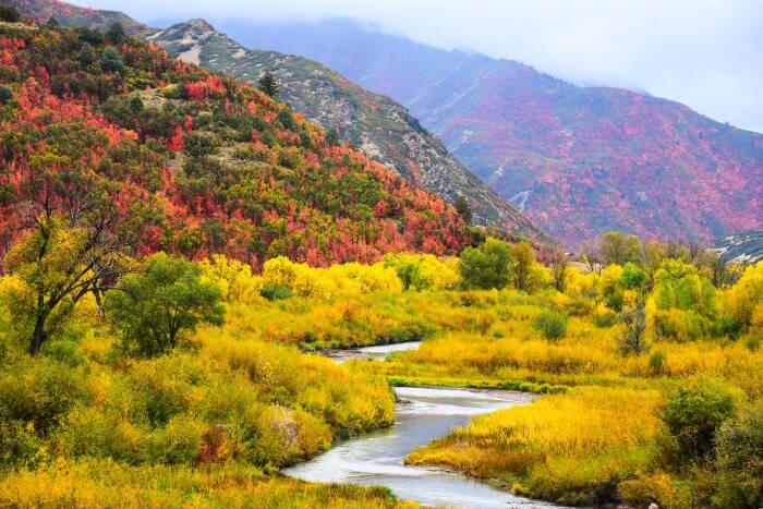 Εντυπωσιασμένοι από την ξενάγηση τους στα Κέντρα Πληροφόρησης του Εθνικού Πάρκου Βόρειας Πίνδου δηλώνουν οι επισκέπτες