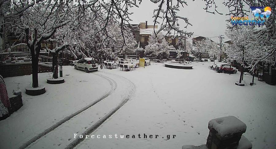 Κατάλευκο σκηνικό στη Σαμαρίνα Γρεβενών και στο Νυμφαίο Φλώρινας – Φωτογραφίες από τη χιονόπτωση που σημειώνεται
