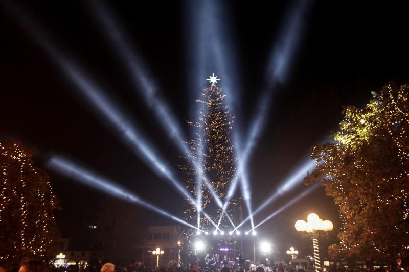 Χριστούγεννα 2019:Φωταγωγήθηκε το ψηλότερο φυσικό χριστουγεννιάτικο δέντρο της Ελλάδας στα Τρίκαλα