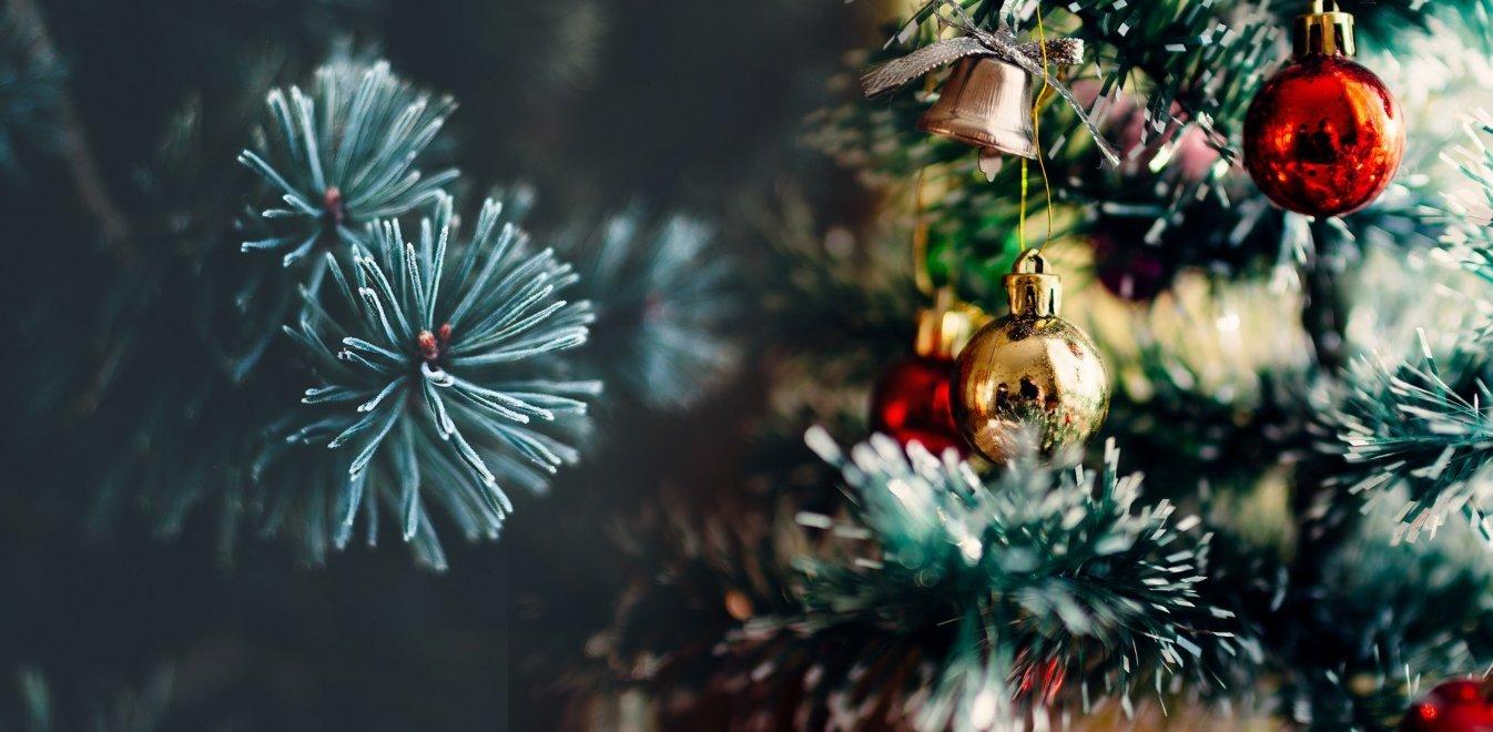 Άναψε το Χριστουγεννιάτικο δέντρο της Κοζάνης – Πλήθος κόσμου στη συναυλία Βαρδή και Λιανού
