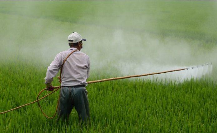 Η ΕΕ απαγόρευσε εντομοκτόνο που θεωρείται επιβλαβές για τις μέλισσες