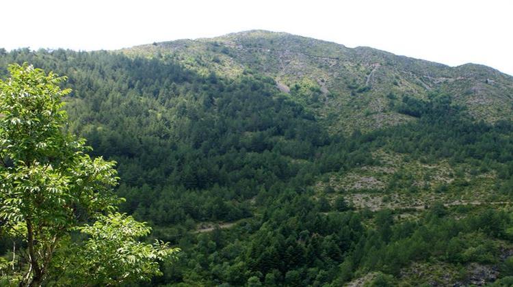 Νέα απειλή βιομηχανοποίησης της προστατευμένης από το Δίκτυο Natura, περιοχής του Μπουρίνου