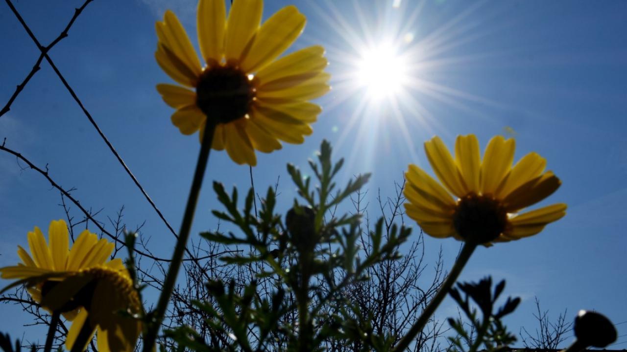 Λιακάδα και σταδιακή άνοδος της θερμοκρασίας για σήμερα Σάββατο 25 Απριλίου