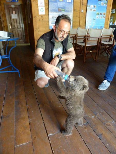 Διασώστης προσφέρει πρώτες βοήθειες σε ζώα και πτηνά