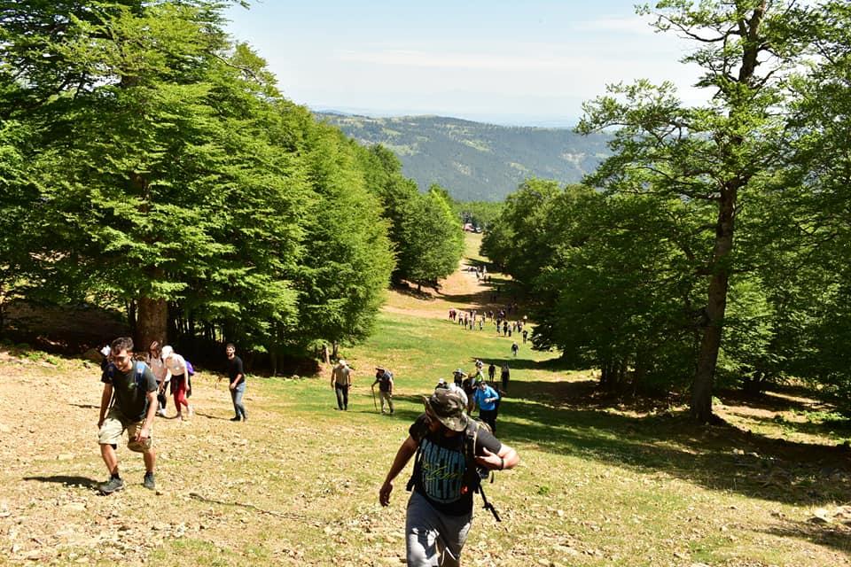 """Πρωτοβουλία ενάντια στην """"πράσινη ανάπτυξη"""" και τα αιολικά στα Γρεβενά- Πραγματοποιήθηκε το οδοιπορικό στην κορυφή της Βασιλίτσας"""