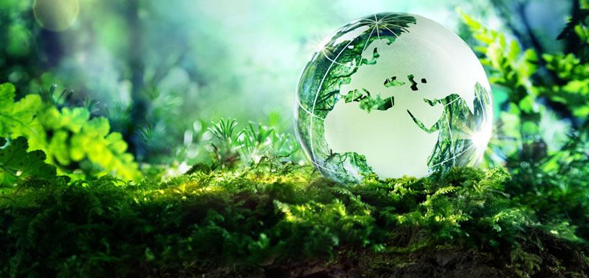 Μήνυμα του Περιφερειακού Διευθυντή Εκπαίδευσης Δυτικής Μακεδονίας για την Παγκόσμια Ημέρα Περιβάλλοντος