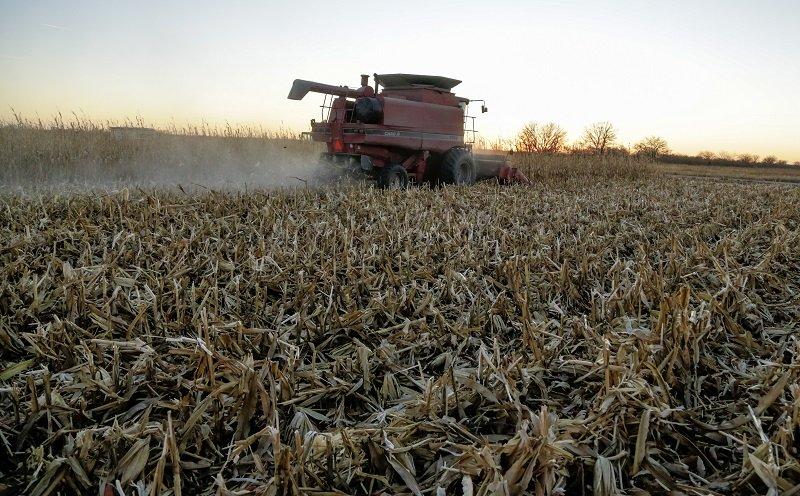 Αγρότες: Ποιοι κερδίζουν φέτος έκπτωση φόρου έως 2.100 ευρώ