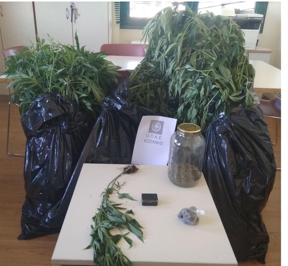 Συνελήφθησαν δύο άτομα σε περιοχή της Κοζάνης για καλλιέργεια και κατοχή ναρκωτικών ουσιών (Φωτογραφία)