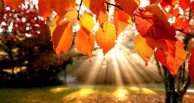 21 Σεπτεμβρίου: Ξεκινά επισήμως το φθινόπωρο την Τρίτη με τη φθινοπωρινή ισημερία