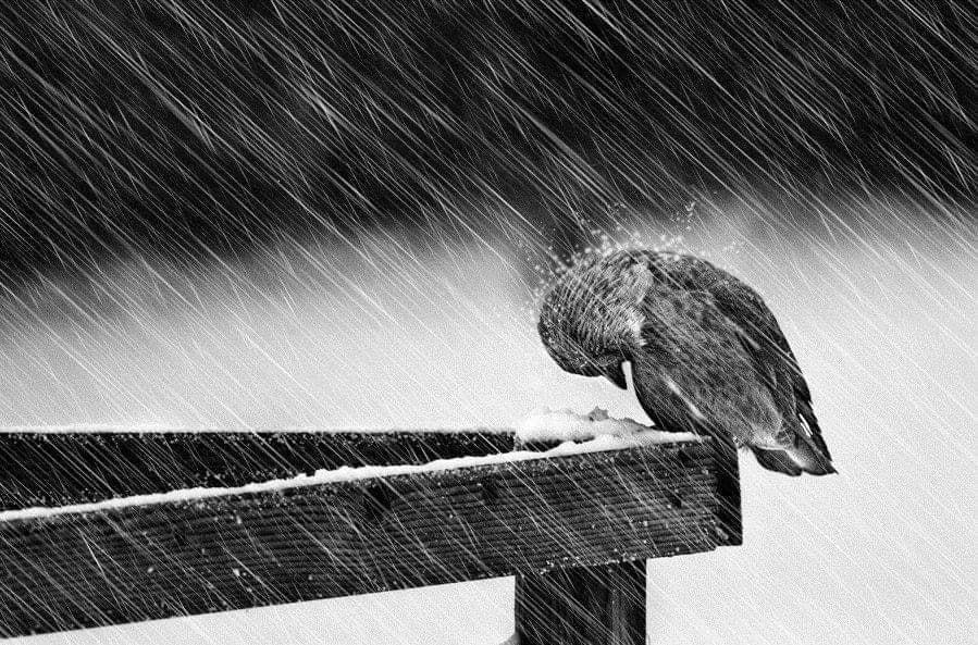 …ποτέ δεν ξέρεις πόσο Δυνατός είσαι…μέχρι που το να είσαι Δυνατός…είναι η Μόνη σου Επιλογή…*Του Ευθύμη Πολύζου
