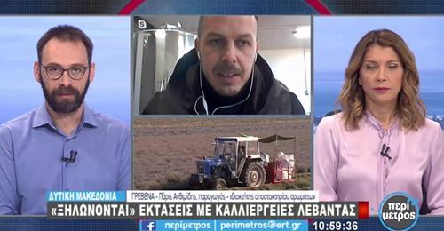 Ο Σάκης Φωλίνας για τις καλλιέργειες λεβάντας στα Γρεβενά