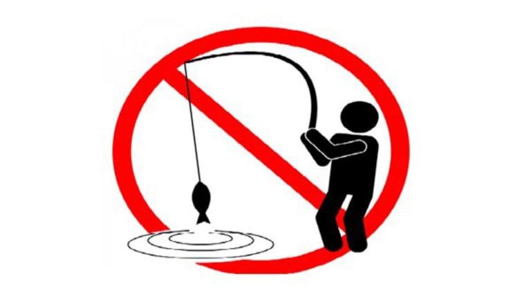 Απαγόρευση αλιείας στα εσωτερικά νερά της Π.Ε. Κοζάνης λόγω αναπαραγωγής των ψαριών