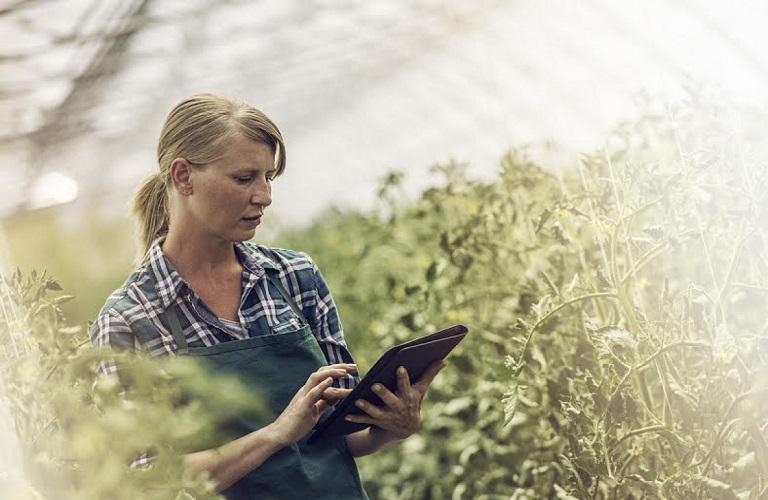 Νέοι αγρότες: Πώς θα γίνει η τηλεκατάρτιση – Δικαιούχοι