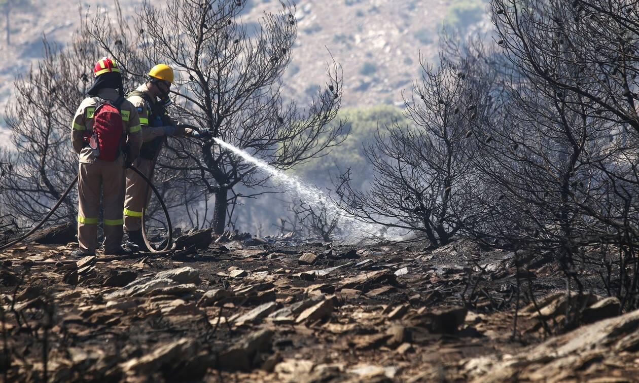 Το βαρύ τίμημα των πυρκαγιών: Επτά εκατ. στρέμματα έγιναν στάχτη τα τελευταία 20 χρόνια