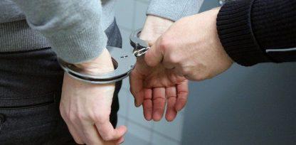 Σύλληψη 53χρονου στον Γράμμο για συλλογή αρωματικού φυτού (Φωτογραφία)