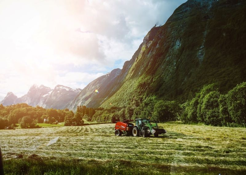 Δήλωση καλλιέργειας: Ποια είναι η διαδικασία υποβολής