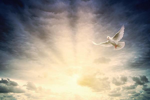 21 Ιουνίου – Του Αγίου Πνεύματος