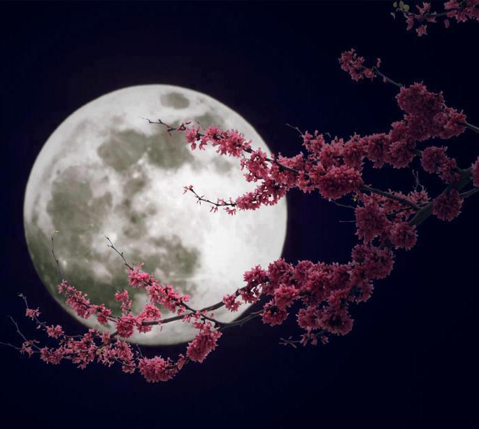 «Φεγγάρι της Φράουλας» αύριο- Τι ιδιαίτερο έχει η υπερπανσέληνος της Πέμπτης