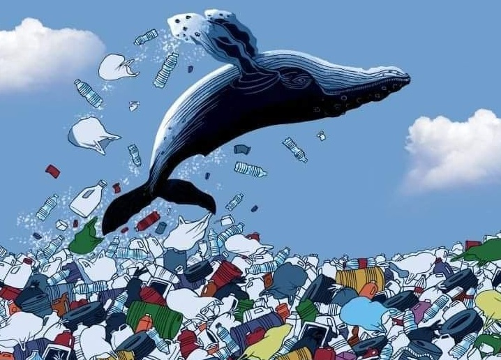 …Παγκόσμια Ημέρα των Ωκεανών σήμερα..*Του Ευθύμη Πολύζου