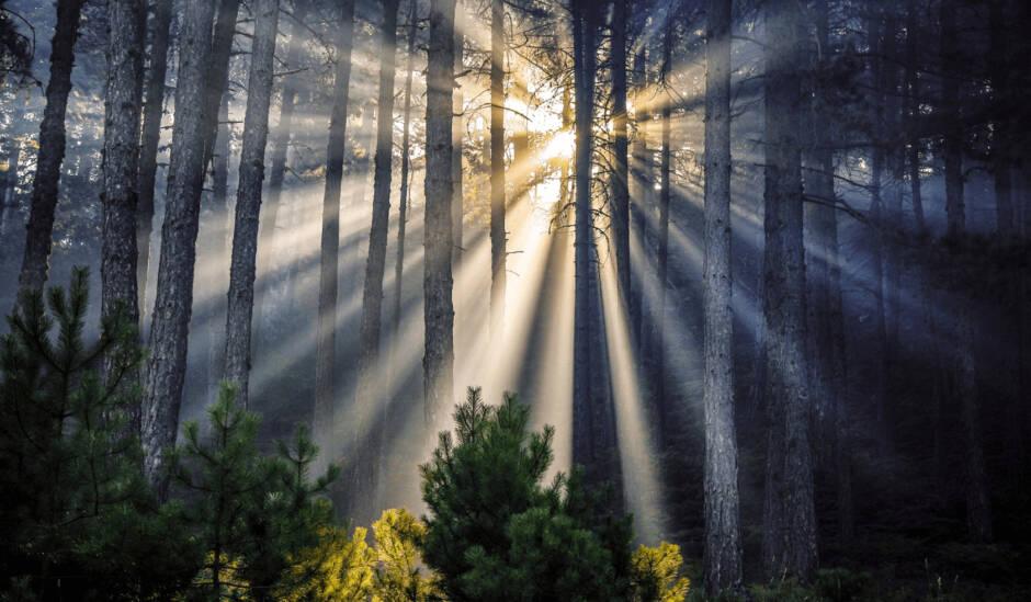 Η ομορφιά των ελληνικών περιοχών Natura 2000 σε 40 εντυπωσιακές φωτογραφίες